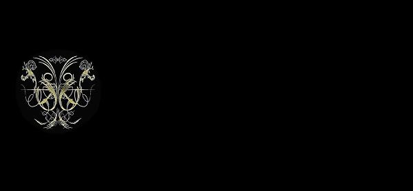 Empyrean coin specs