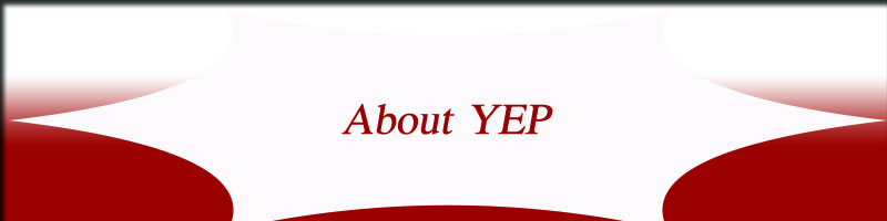 about yep coin