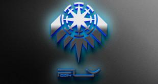 FLy coin